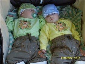 Спящие царевичи!