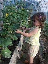Во саду ли,в огороде уродились огурцы!!))