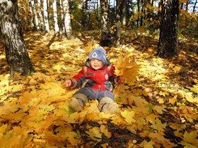 Отдыхаем в лесу