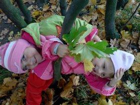 Осеннее головокружение