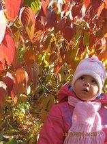 Богряная осень