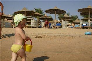 Египет,2011
