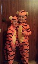 Мои тигры :)