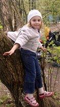 Я на дереве висю