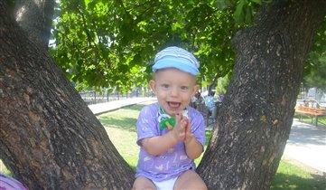 Я так люблю лазить по деревьям
