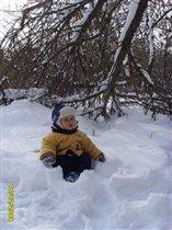 Навалило снега - наломало дров