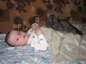 Кошка лечебная, применять наружно
