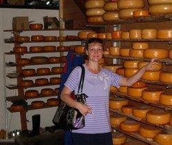 Настоящий голландский сыр!