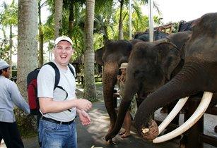 Мой друг слоненок!