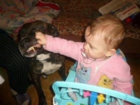 Дай поглядеть зубки!