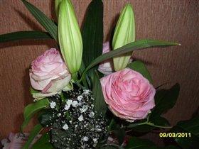 Мои любимые цветы...
