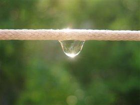 Маленькая дождевая капелька на бельевой верёвке.