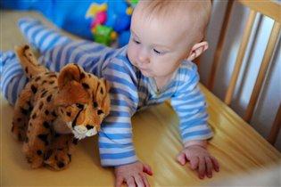 Димонтёнок-тигренок, Близнецы