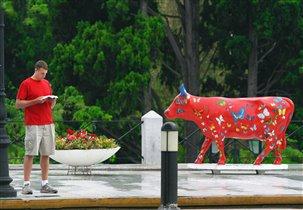 Красная корова.Афины.