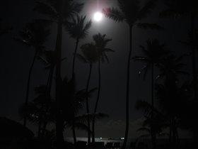Ночка светлою была...