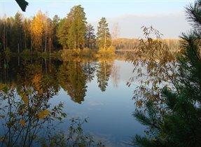 зеркало осеннего леса, красота!