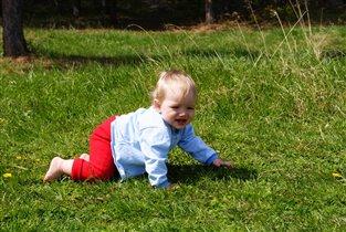 солнце,воздух и ...трава!