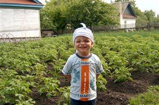 Скоро картошку копать будем!..