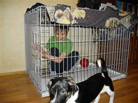 Детка в клетке :-)