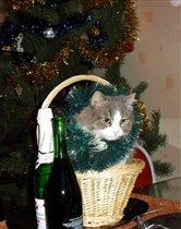 Наша новогодняя елка в корзинке!