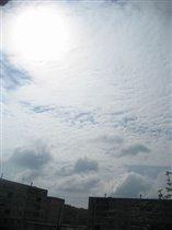 Пушистое небо