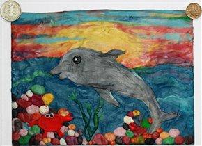 Дельфин в предрассветных лучах солнца