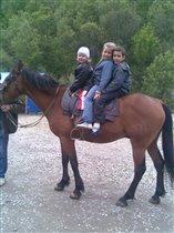 Мы на лошади втроём