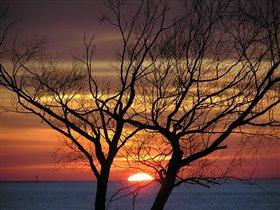 ловец солнца