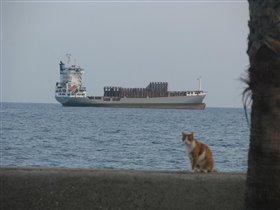 В порту г. Лимассол, Кипр