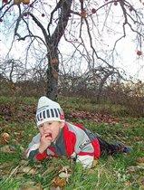 Осенние яблочки...