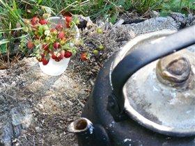 Лесная земляника и ... лесной чайник)))