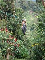 Полет над джунглями на тарзанке