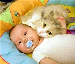 Приходи к нам тетя Кошка нашу детку покачать