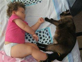 Фотоконкурс дети и кошки  Сладкие сны