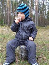 Сяду на пенёк, съем пирожок -))