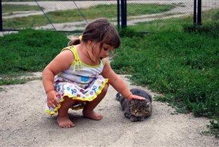 Разрешите, тетя кошка, я поглажу Вас немножко...