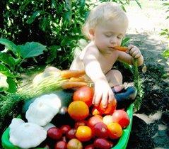 Завтрак на собственном огороде!Все сам вырастил!