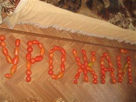 Урожай томатов.