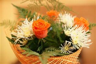 Многообразие цветов
