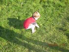 В траве сидел кузнечек...