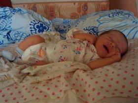 Я здесь сплю,сны про сисю смотрю.