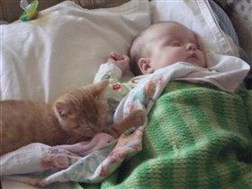малыши спят