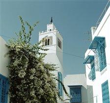 Два цвета слились меж собой:мой город бело-голубой