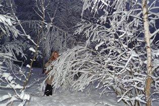 ах, зима -красавица
