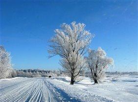 мороз и солнце...день чудесный!