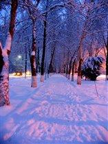 Зимний вечер, аллея