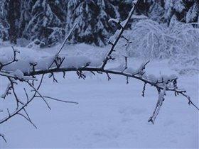 Лёд на ветки ...в далике снега!