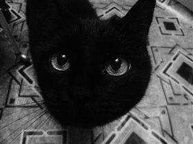 Загляни в мои глаза...