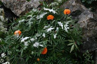 Первый снег в начале октября