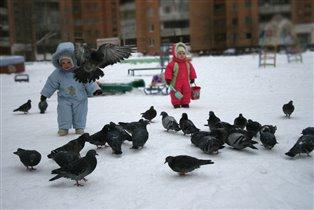 Детки и птички.